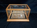 Dark Oak Display Case