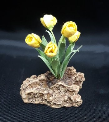 Tulips on Rock, Yellow