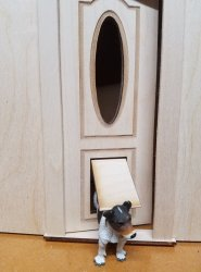 Oval Pane Door with a Pet Door