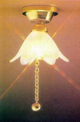 Ceiling Fixture with Frosted Flower & Pull Chain