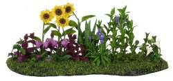 Flower Bed, Yellow Daisy, C