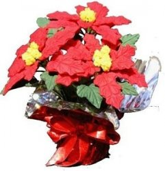 Red Poinsettias with Red Foil Wrap