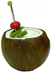 Coconut Tropical Drink
