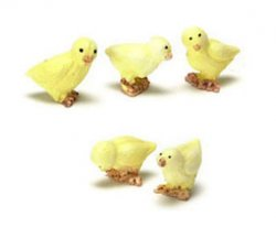Chicks, set of 5