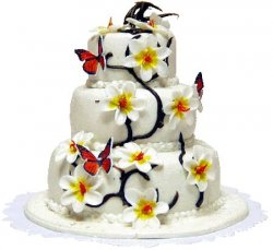 3-Tier Buterfly Flower Cake
