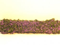 Lilac Hedge, Large