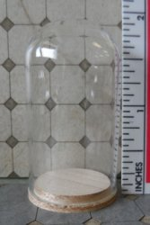 "Glass Dome with Wood Base 1""x1-3/4"""