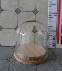 "Glass Dome with Wood Base 1/2""x5/8"""