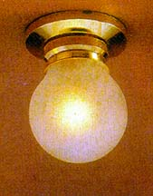 Frosted Globe Ceiling Lamp
