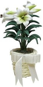 Easter Lily in Basket w/ Bow