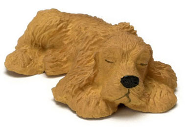 Sleeping American Cocker Spaniel - Click Image to Close