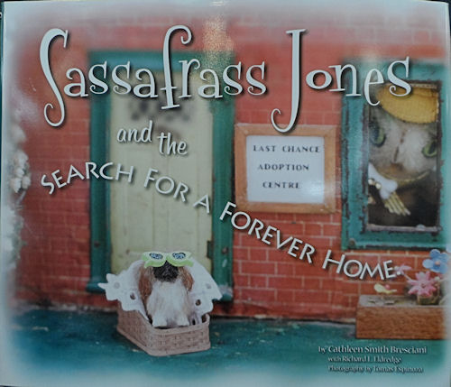 Sassafrass Jones and the Search for a Forever Home - Click Image to Close